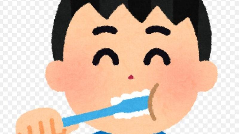 【悲報】男、1日2回歯磨きする奴5割もいた
