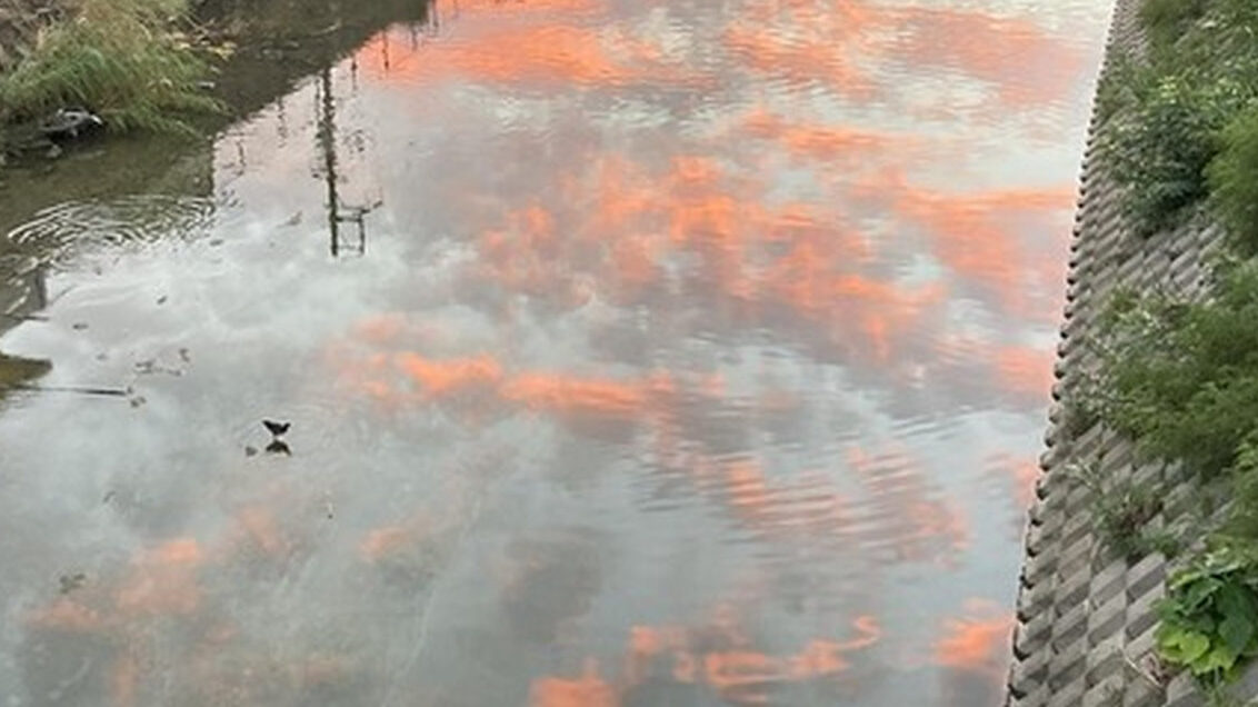 【朗報】ワイの撮った川の写真、かなりいい