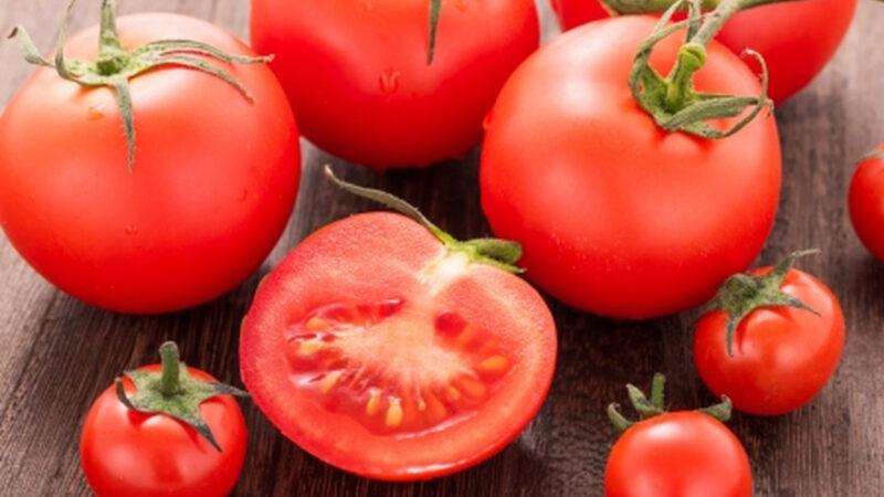 【悲報】トマト、嫌いな食べ物にランクイン