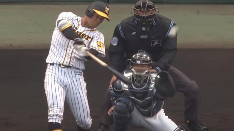 佐藤輝明(21).381 3本 出塁率.381 OPS1.238←これ