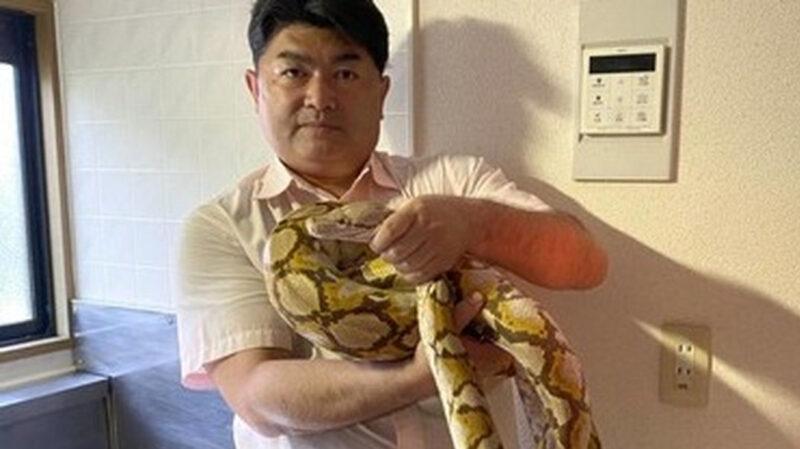 【脱走】ニシキヘビの飼い主「ヘビは手放します。ご迷惑とご心配をおかけして申し訳ありません」